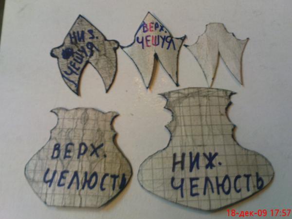 Кольчуга ДРАКОНА - 1 (Фото 7)