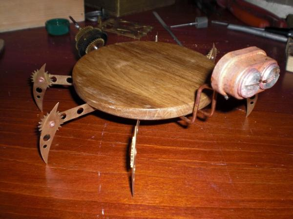 жучара (Фото 2)