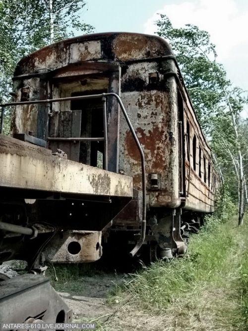 Кладбище поездов в Воскресенске (Фото 4)