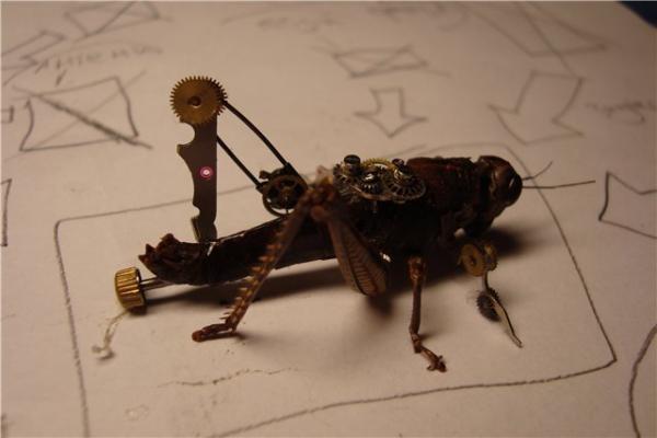 На тему насекомых (Фото 8)