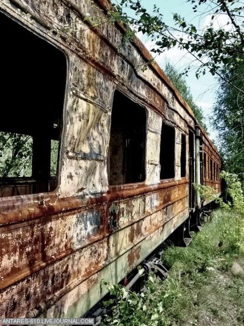 Кладбище поездов в Воскресенске (Фото 7)