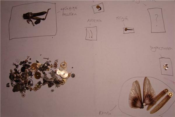 На тему насекомых (Фото 3)