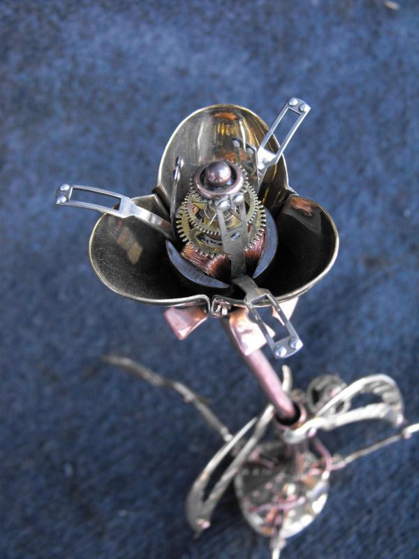 Цветок Николо Тесла   - расцвел. (Фото 5)