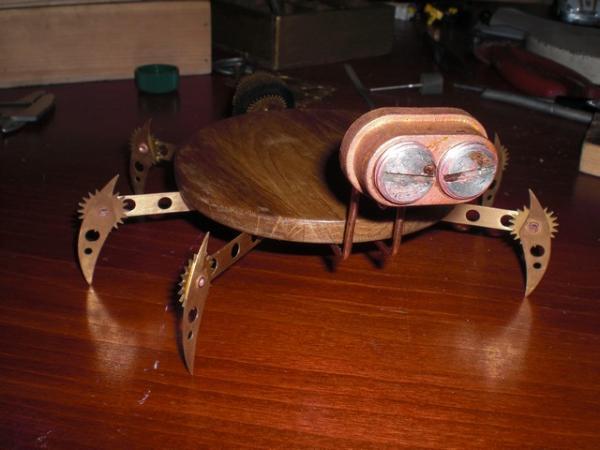 жучара (Фото 3)