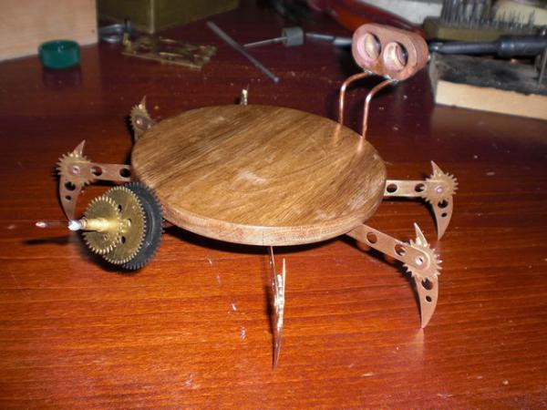 жучара (Фото 4)