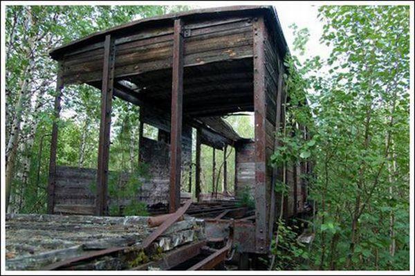 Кладбище паровозов (Фото 16)