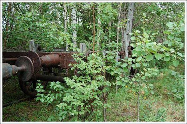Кладбище паровозов (Фото 2)